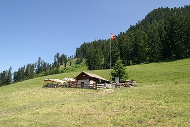 Steinpilz moreover 3893086447 additionally Exotic Dangers as well Großer feldberg besides bigkahunahuts co. on small hut